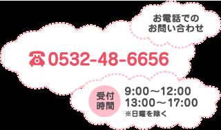 お電話でのお問い合わせ 0532-48-6656